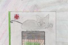 Aylisha (10) Katzenhotel