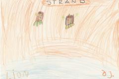Lion (6) Strand